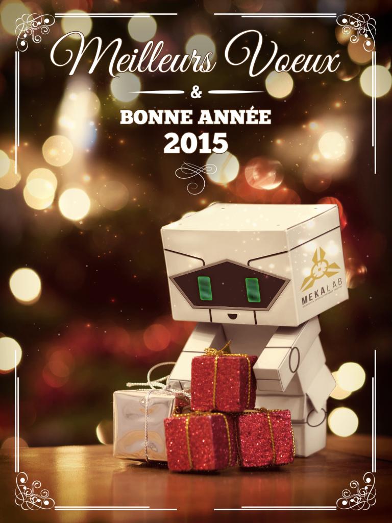 Mekalab vous souhaite une bonne annee 2015